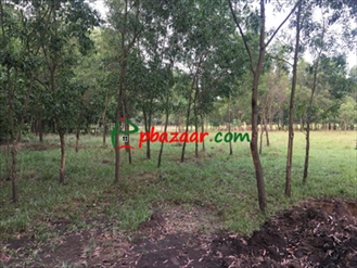 Picture of Resort, Shooting Spot, Industry, Farmhouse