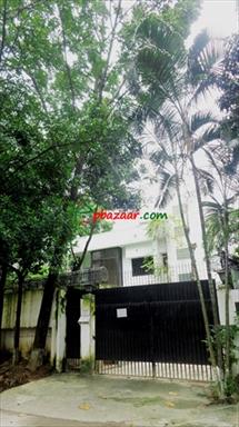 4000 Sqft Apartment for Rent in Baridhara এর ছবি