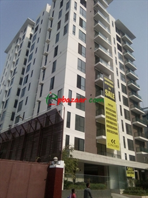Brand new apartment by concord with pool & gym এর ছবি