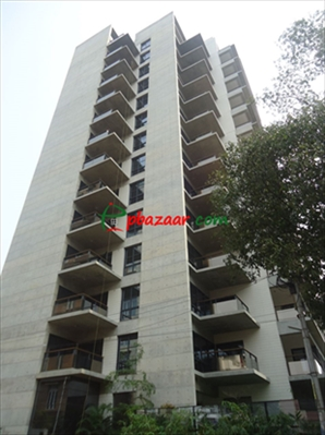 Picture of Big Brand new Apt: at Gulshan 1
