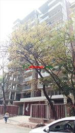 Picture of 4700 sqft Apartment for Sale at Dhanmondi