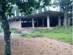 Commercial Building With Free Space Rent এর ছবি