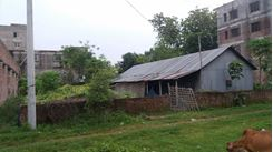 Picture of Tin shed house with 5 katha plot at hemayetpur, Savar