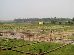 Picture of Land Sale  Purbachal 26& 27 Beside
