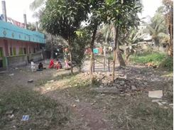 Land and house for sale in Jamai Para, Bandar, Naranganj Area এর ছবি