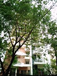 2394 Sft Brand New Apartment For Sale, Bashundhara RA এর ছবি