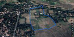 20 Bigha Bagan Bari Land For Sale, Gazipur এর ছবি